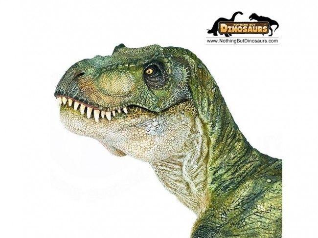 Dino World - Говорещ динозавър със светещи очи