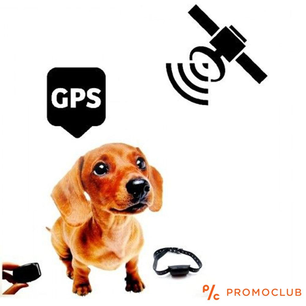 Чрез GPS Positioner с Real Time карта за проследяване никога няма да изгубите своя любимец